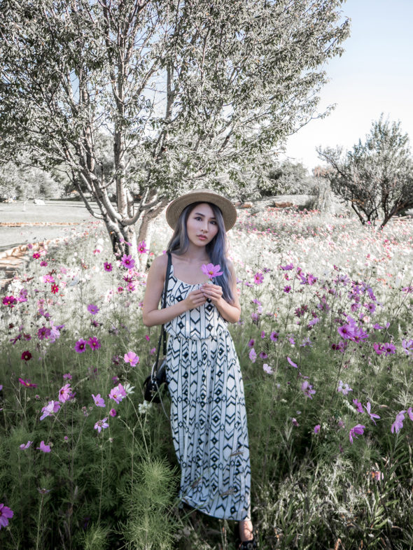 Top 6 Photo Opportunities in Santa Fe | Atsuna Matsui